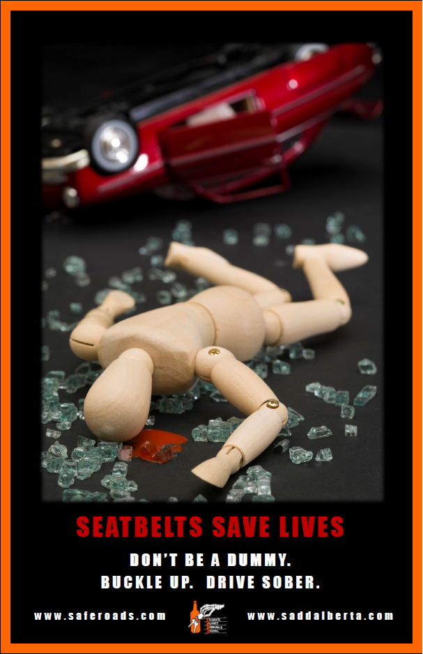 Dummy - Seatbelt Poster #1
