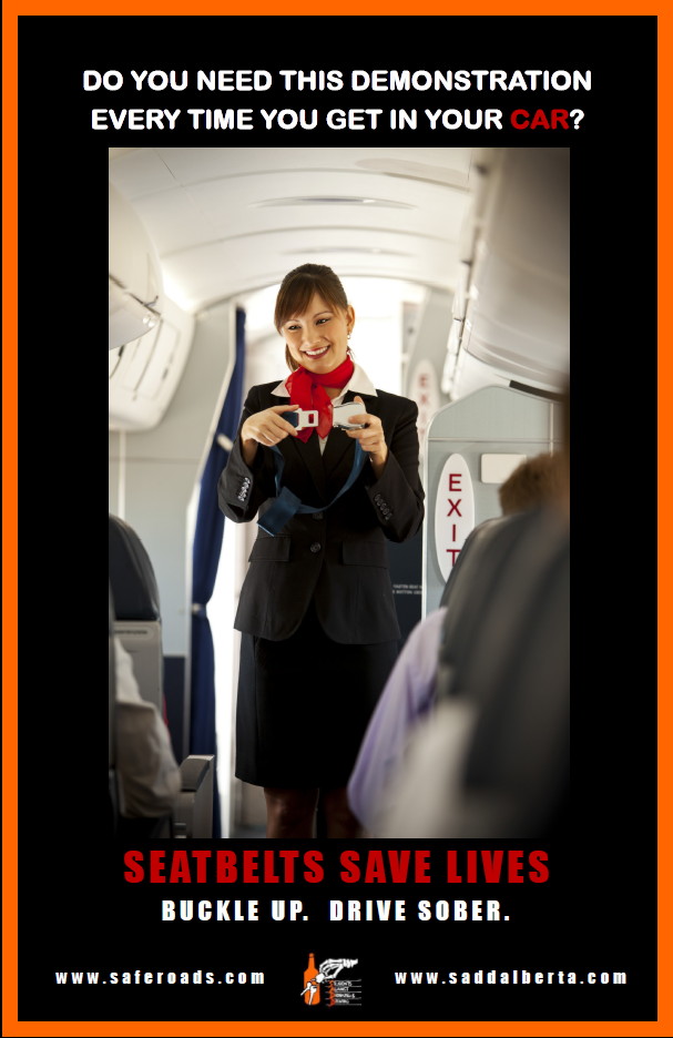 Seatbelt Demonstration Poster
