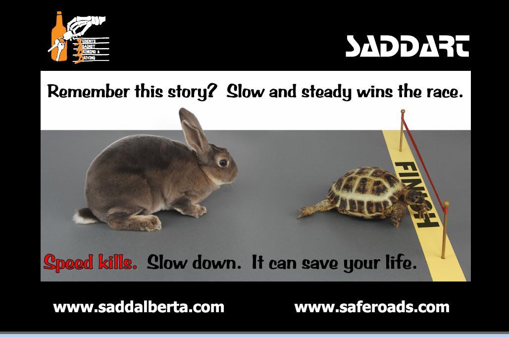 Tortoise & Hare Poster